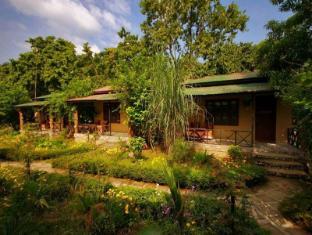 /es-es/chitwan-gaida-lodge/hotel/chitwan-np.html?asq=vrkGgIUsL%2bbahMd1T3QaFc8vtOD6pz9C2Mlrix6aGww%3d