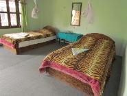 Suite Bungalow