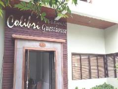 Colibri Guesthouse | Thailand Budget Hotels