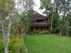 Lihat Sawah 1 Guesthouse | Indonesia Hotel