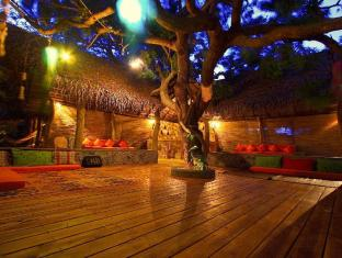 Surf n Sun - Arugambay Guesthouse