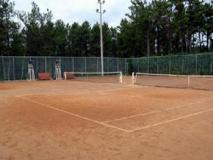 Pine Ville Pension: sports and activities