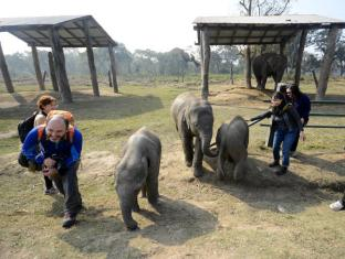 Green Park Resort Chitwan Chitwan - Elephant Breeding Centre