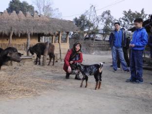 Green Park Resort Chitwan Čitvanas - Šalia esančios lankytinos vietos