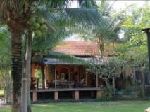 Vietnam Hotel Accommodation Cheap   garden