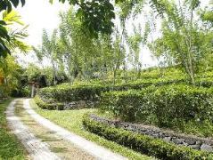 Oriole Villa | Sri Lanka Budget Hotels