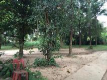 Vongkham Guesthouse: surroundings