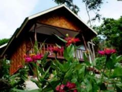 Phi Phi Dusit Bungalow | Thailand Cheap Hotels