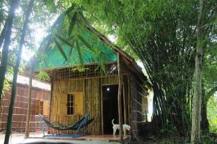/green-village-homestay/hotel/can-tho-vn.html?asq=jGXBHFvRg5Z51Emf%2fbXG4w%3d%3d