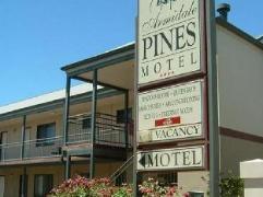 Armidale Pines Motel   Australia Budget Hotels