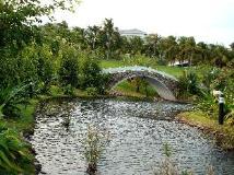 Vietnam Hotel Accommodation Cheap   surroundings