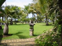 Queen of The South Resort | Indonesia Budget Hotels