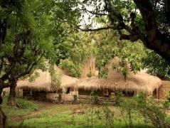 Jati Village Indonesia