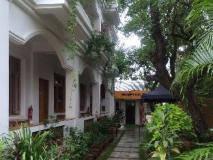 Ma Ma Guest House: garden