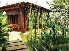 The Frog Khao Yai Resort | Cheap Hotel in Khao Yai Thailand