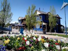 Blue Pub Hotel | New Zealand Budget Hotels