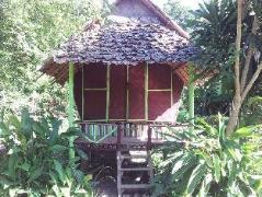 Purple Monkey Guesthouse | Thailand Cheap Hotels