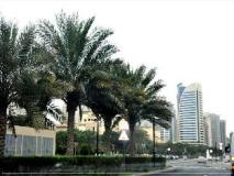 Dubai Apartments - The Greens - Golf Tower: surroundings