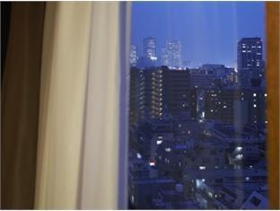 Hotel JAL City Yotsuya Tokyo Tokyo - View