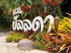Pallada Bromeliads Resort   Chiang Mai Hotel Discounts Thailand