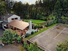 Dancing Trees Auckland Bed & Breakfast | New Zealand Budget Hotels