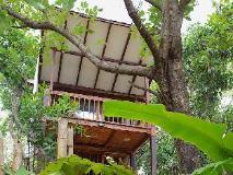 Shunya Kaju Varo Villa: shunya eco bungalow treehouse