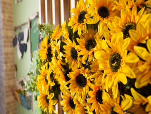 Sun Flower Bed and Breakfast