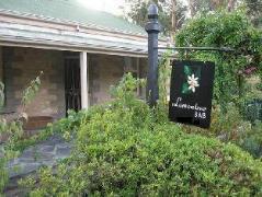 Lemontree Cottage   Australia Hotels Clare Valley