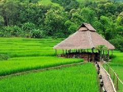 Laos Hotel | Kamu Lodge