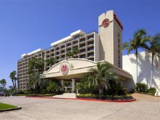 /sheraton-san-diego-hotel-and-marina/hotel/san-diego-ca-us.html?asq=vrkGgIUsL%2bbahMd1T3QaFc8vtOD6pz9C2Mlrix6aGww%3d