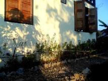 Luang prabang Homestay: garden