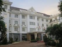 Double Lotus Hotel: view
