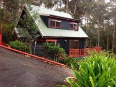 Australia Hotel Booking | Tree Tops Cascades Cottages