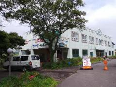 Hallasan Guesthouse | South Korea Hotels Cheap