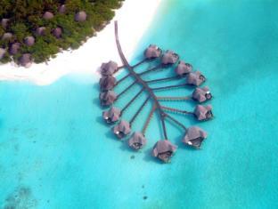 /ca-es/coco-palm-dhuni-kolhu/hotel/maldives-islands-mv.html?asq=jGXBHFvRg5Z51Emf%2fbXG4w%3d%3d