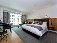 Premium Luxury King Room