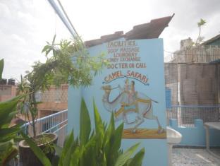 Bob Marley Hostel