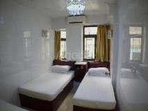 Comfort Guest House: twin room