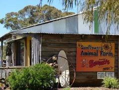 Sunflowers Animal Farm and Farmstay Guest House | Australia Hotels Margaret River Wine Region