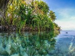 Himandhoo Inn | Maldives Budget Hotels