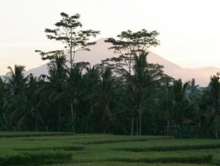Viceroy Bali Luxury Villas Bali - Surrounding
