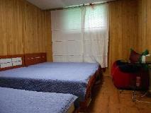 Elvis B & B: guest room