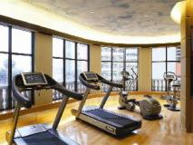 Lanson Place Hotel: fitness room