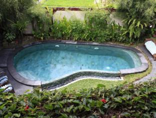 Junjungan Ubud Hotel & Spa Bali - Swimming pool