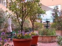 Arts Hotel: garden