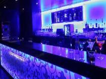 Krishna Palace Hotel: pub/lounge