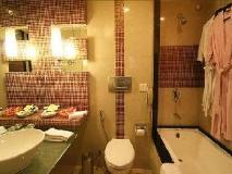 Krishna Palace Hotel: bathroom