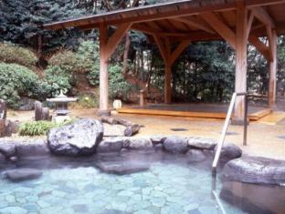 湯本富士屋酒店 箱根 - 水療中心