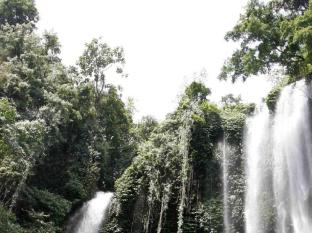Rambutan Lovina Hotel बाली - परिवेश