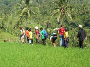Rambutan Lovina Hotel Bali - Omgivelser